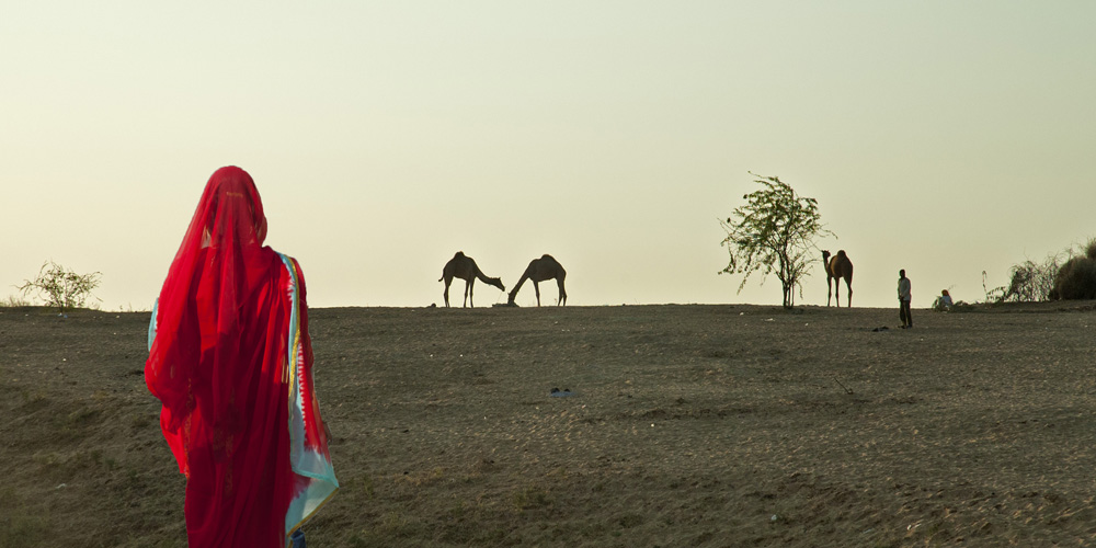 Woman in red sari at Pushkar Fair photograph by Raphael Shevelev