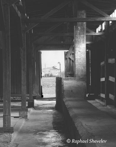 Barrack Birkenau