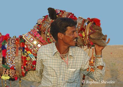 Decorated camel at Pushkar Fair Rajasthan photograph by Raphael Shevelev