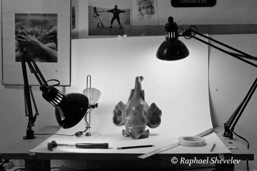 Elephant in my Studio