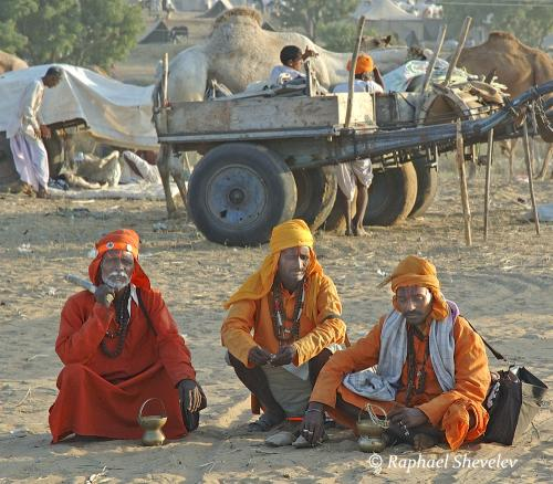 Indian holy men at Pushkar Fair Rajasthan photograph by Raphael Shevelev