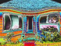 Owl House digital image art photograph by Raphael Shevelev